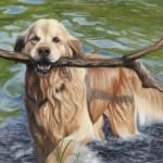 retriever, golden retriever, dog painting, dog portrait