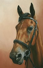 Splash, pastel horse portrait