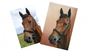 Horse pet portrait comparison with reference photograph