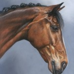 horse portrait, equine portrait, pet portrait, horse painting,