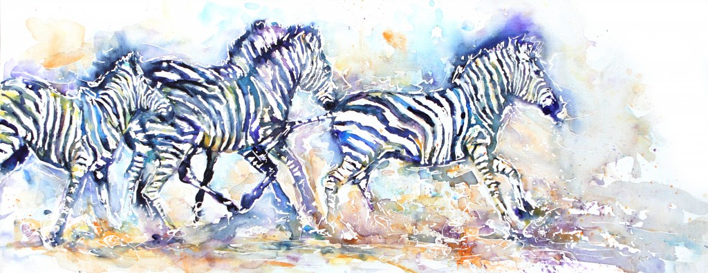 zebra, zebras, running, zebra running, african art, african animals, watercolour painting, zebra watercolour, zebra painting, art for sale