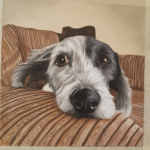 pet portrait, dog portrait, old english sheepdog, pet portraits, pet painting, dog painting, dog art, pet artist