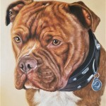 dog portrait, dog painting, pet portrait, pet painting, dog art, pet art, dog portrait gift, pet portrait gift
