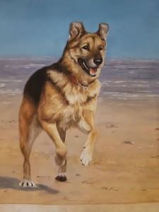 pet portrait, dog portrait, pet painting, dog portraits, pet portraits, dog art, dog pastel painting, dog running on beach