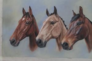 horse portrat, horse portraits, triple horse portrait, equine art, pet portraits, pet portrait