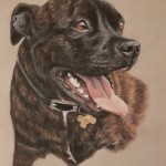 pet portrait, pet portraits, dog portrait, dog portraits, dog painting, dog paintings