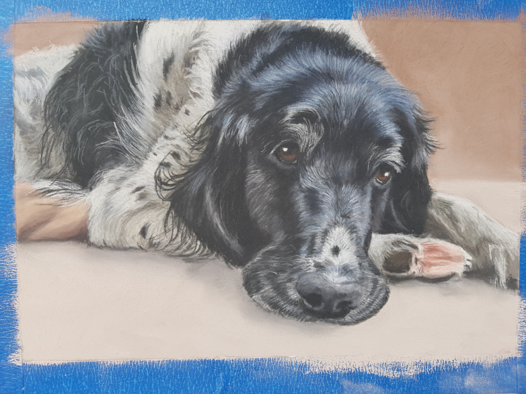 pet portrait, dog portrait, dog portraits, pet paintings, dog art, dog artist, pet paintings