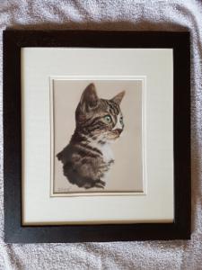 cat portrait, pet portrait, pet portraits, cat portraits, pet pat painting, pet paintings