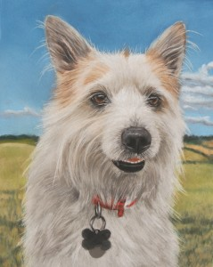 pet portrait, pet portraits, pet panitings, pet painting, dog portrait, dog portraits