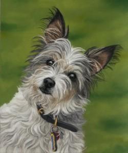 pet portraits, pet portrait, pet painting, pet paintings, dog portrait, dog portraits, pet artist