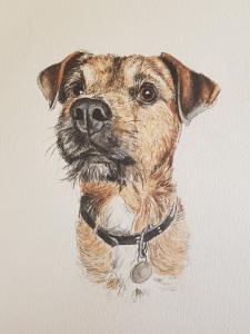 dog portrait, pet portrait, pet portraits, dog portraits, dog artists, dog art, pet paintings