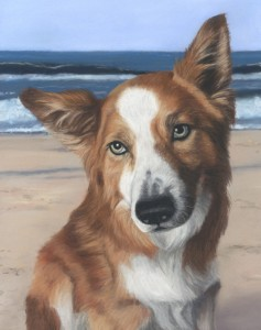 pet portrait, pet portraits, pet painting , pet paintings, pet artist, pet art, dog portraits, dog portrait