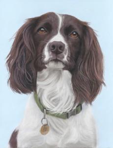 pet portrait, pet portraits, dog portrait, dog portraits, dog painting, dog paintings, dog artist, pet artist, pet art