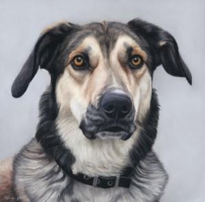 Milo portrait smalljpg