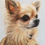 pet portrait, pet paintings, pet artist, dog portrait, dog portraits,