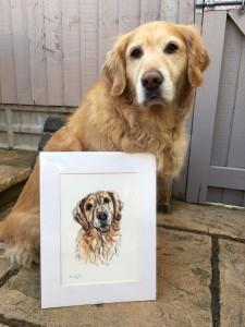 pet portraits pet portrait, pet painting, dog portrait, dog portrait