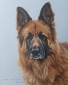 Dog portraits, dog portrait, pet portrait, pet portraits, animal artist, pet painting, pet paintings