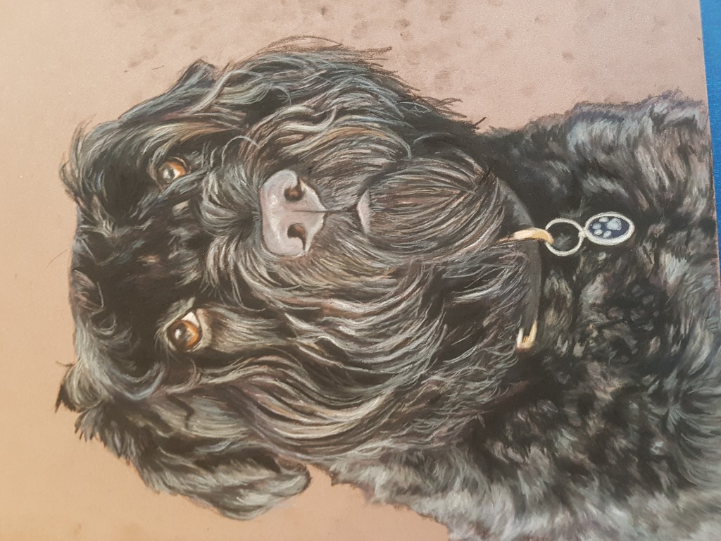 Dog portraits, dog portrait, pet portraits, pet portrait, pet paintings, pet painting, animal artist, pet artist,