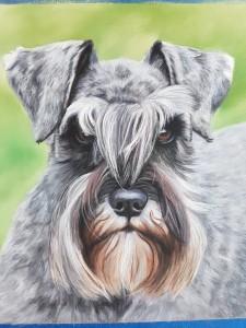 Dog portraits, dog portrait, pet portrait, pet portraits, pet painting, pet paintings