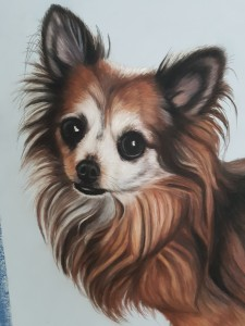 Pet portraits, pet portrait, pet painting, pet paintings, dog portrait, dog portraits