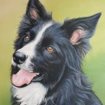 dog portrait, dog portraits, pet portrait, pet portraits, pet portraits uk, pet painting, pet paintings, dog paintings UK, dog artist, dog artist, pastel pet portraits