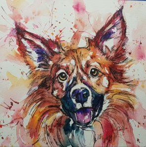 Pet portrait, pet portraits, pet portrait artist, dog portrait dog portraits, dog portrait artist, canine artist, canine portraits, rainbow watercolour pet portraits,