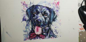 Pet portraits, pet portrait, pet painting, pet paintings, dog portrait, dog portraits, watercolour pet portraits, dog artist, pet portrait artist