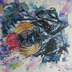 Pet portrait, pet painting, pet paintings, pet portraits, dg portraits, dog pet portraits,, watercolour pet portraits, animal artist, dg artist