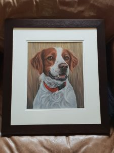 Pet portrait, pet portraits, pet painting, pet paintings, dog portrait, dog portraits, pastel pet portraits, pastel pet portrait, pastel dog portraits, pastel dog portrait, framed pastel portrait, framed pastel portraits