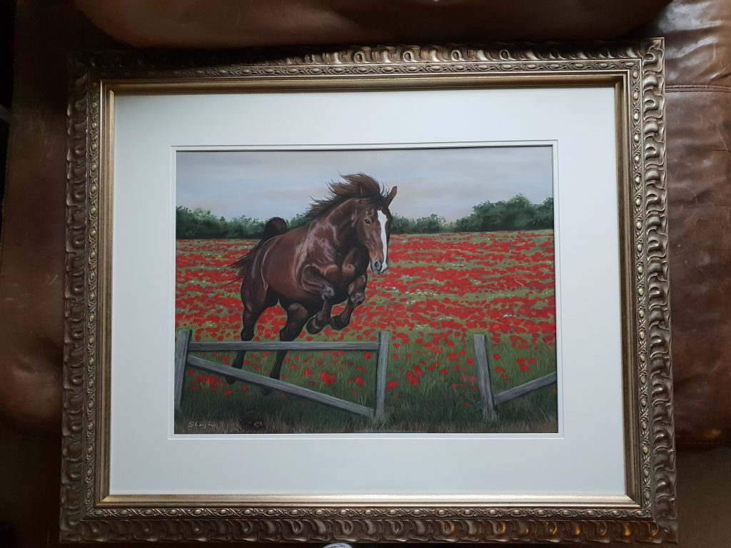 framed horse portrait and poppies