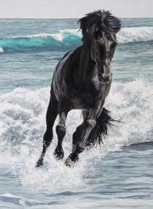 horse portraits. horse portraits, equine portrait, equine portraits, pet portrait, pet portraits, pet portrait artist, pet portraits UK, UK pet portrait artist