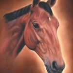 horse portrait, horse portraits, pet portraits, pet portrait, pet painting, pet paintings, horse painting, horse paintings, pastel horse portrait, pastel horse portraits, pastel horse painting, pastel horse paintings, pet portraits UK, pet paintings UK, UK artist, equine artist, equine portrait, equine portraits