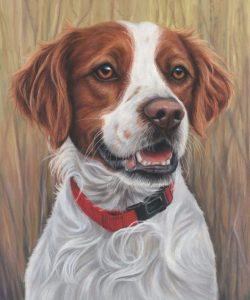 Pet portraits UK, pet portraits, pet portrait, dog portrait, dog portraits, pet paintings, pet painting, dog painting, dog paintings, pet portrait artist, pet portraits artist UK, Pastel pet portrait, pastel pet portrait, pastel dog portrait, pastel dog portraits