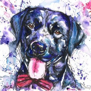 dog portrait, dog portraits, pet portraits, pet portrait, pet portrait, pet portraits, pet painting, pet paintings, dog painting, dog paintings, animal artist, animal paintings, pet paintings in watercolour, dog portraits in watercolour, pet artist, pet portraits from photos