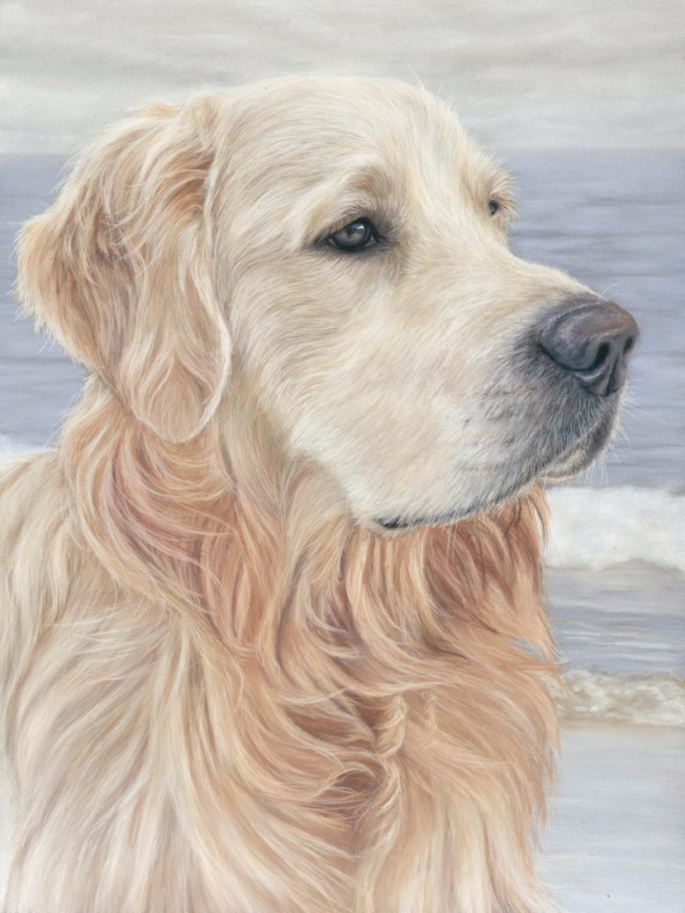 pet portrait, pet portraits, pet painting, pet paintings, dog portrait, dog portraits, pastel pet portraits, pastel pet portrait, pastel dog portrait, pastel dog portraits, dog artist, dog portrait painting, dog portrait paintings