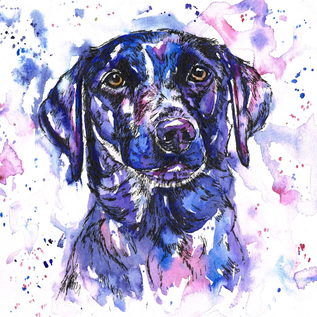 pet portrait, pet portraits, pet painting, pet paintings, dog portrait, dog portraits, dog painting, dog paintings, dog artist, watercolour painting, watercolour pet portrait, watercolour pet portraits, water colour dog portrait, watercolour dog portraits, watercolour pet painting, watercolour pet paintings, watercolour pet portrait artist