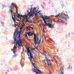 watercolour portrait in red, orange, purple and blues of a korthals griffon called Filou, which is french for Rascal.