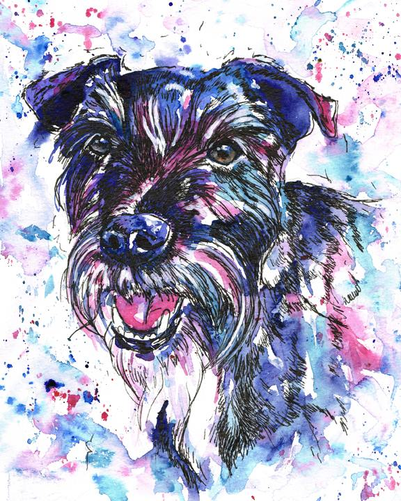 Rocket, patterdale terrier dog portrait in watercolours and pen. Using purples, blues, and magenta