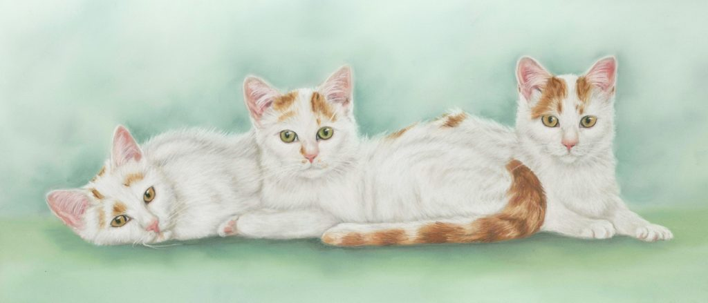 Triple cat pastel painting, with a green background, The cats are ginger and white
