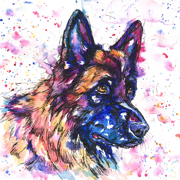 A beautiful GSD portrait in bright vibrant watercolours in the Jolly Splashes style, using blues, purples, reds, oranges and yellows