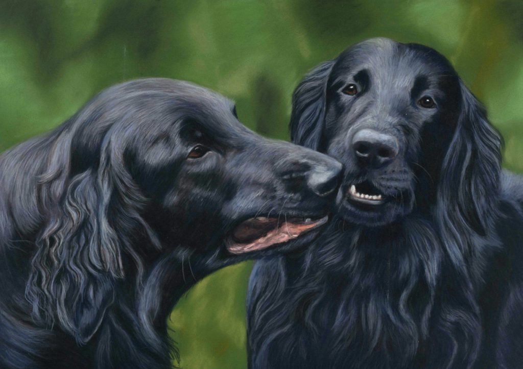 Pet portrait of two flat coat retrievers in pastels with a green background.