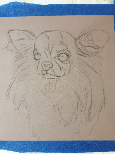 Outline sketch of what will be a pastel dog portrait of Pixie the chihuahua
