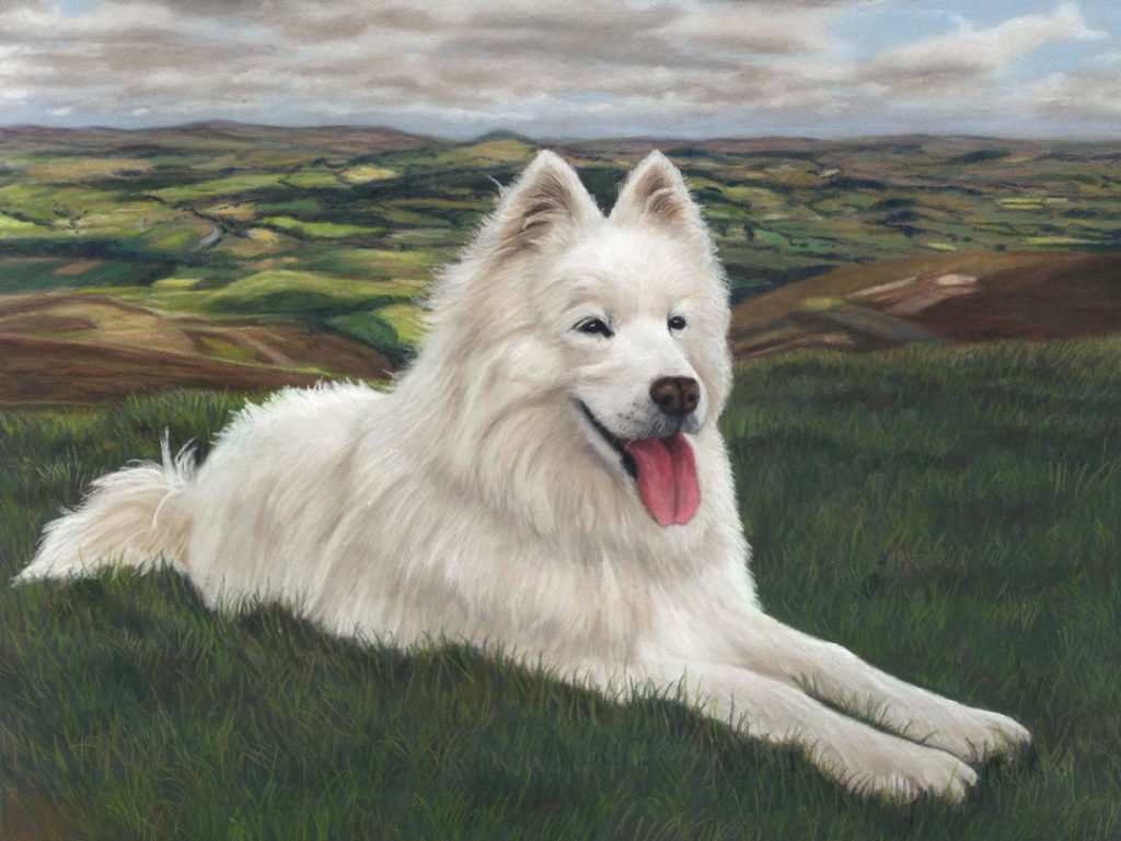 Coco, beautiful white long haired dog portrait with fields and clouds behing her. Painted in pastels and measure 16x12 inches