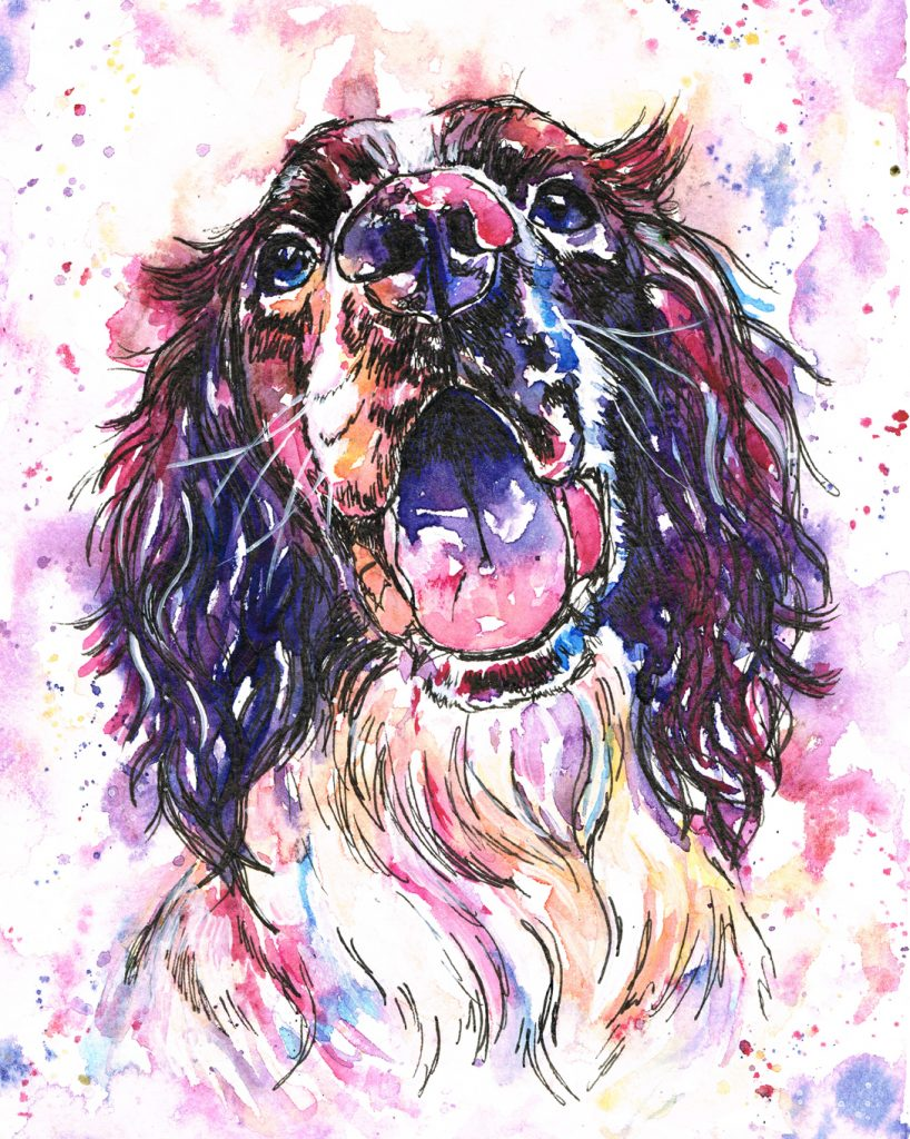 Springer spaniel dog portrait in watercolours. Painted in Purples, magenta's oranges and outlined in pen. Modern pet portrait