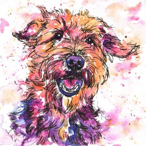 Dog portrait in rainbow watercolours, pet portraits available in this style