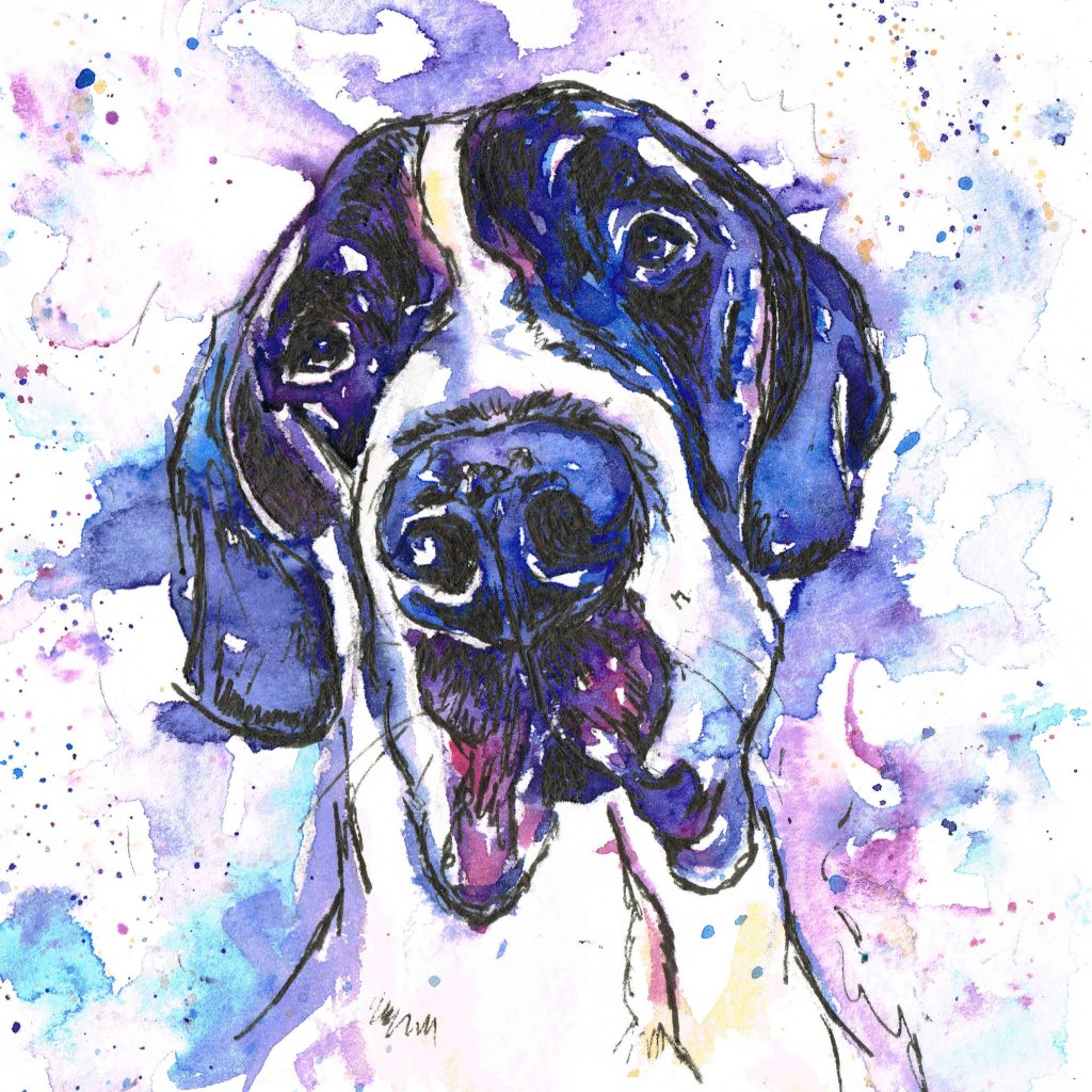 Jolly splashes watercolour pet portrait. measuring 6x6 inches in purples and blues
