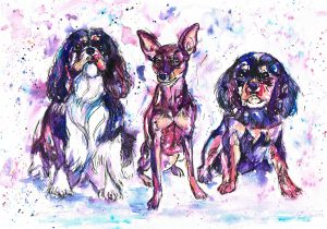 Triple dog watercolour portrait in purples, blues and pinks
