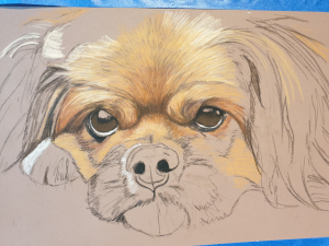 The start of Ike's dog portrait, first layer of colour going down