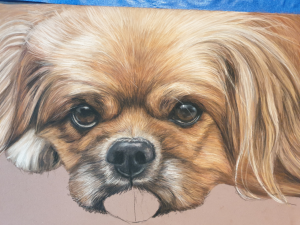 Pet painting of Ike is nearly finished, tongue still to paint