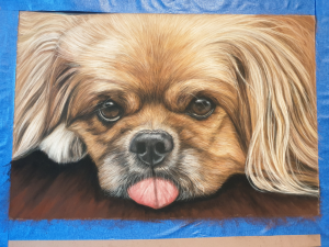 Photo of the finished dog portrait